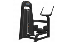 Торс-машина BRONZE GYM LD-9018